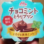 森永乳業 チョコミント とろりプリン とろける爽快ミント
