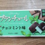 ブルボン ブランチュールミニチョコレート チョコミント味