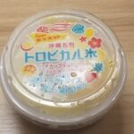 丸永製菓 富士屋監修トロピカル氷 パイナップル&マンゴーパッションフルーツ
