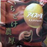 江崎グリコ アイスの実 大人のショコラ